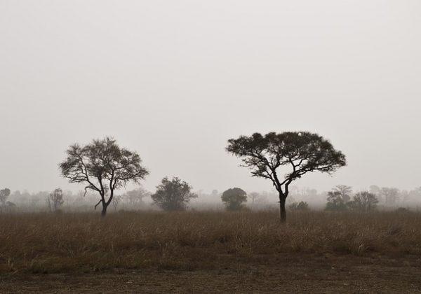 Safari en Afrique : Pandjari, nord-ouest du Bénin